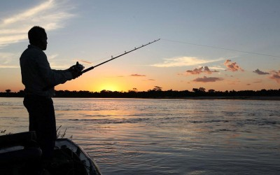 Cota de pesca é reduzida  pela metade no Estado
