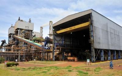 Setor sucroenergético de MS reage e tem 19 usinas operando