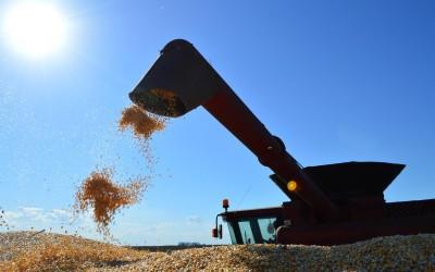 Com receita superior a US$ 1,13 bi, agronegócio responde por 95,5% das exportações de MS