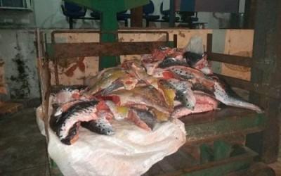 PMA inicia operação de prevenção e repressão à pesca predatória