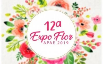 12ª Expo Flor APAE começou nesta terça-feira em Três Lagoas