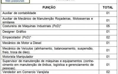 Confira as 17 vagas de emprego disponíveis nesta segunda-feira (08) em Três Lagoas