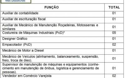Confira as 17 vagas de emprego disponíveis nesta sexta-feira (05) em Três Lagoas