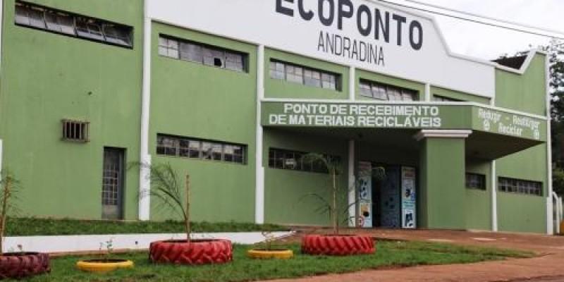Governo de Andradina coleta pequenos animais mortos