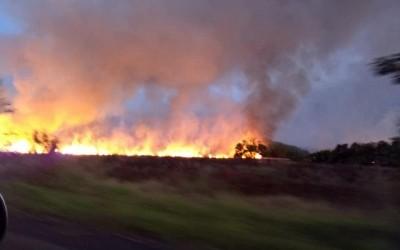 Incêndio na RPPN Cisalpina, da Cesp, queimou a equivalente 2,2 mil campos de futebol
