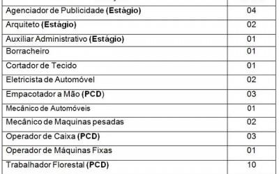 Confira as 32 vagas de emprego disponíveis nesta quinta (15) em Três Lagoas