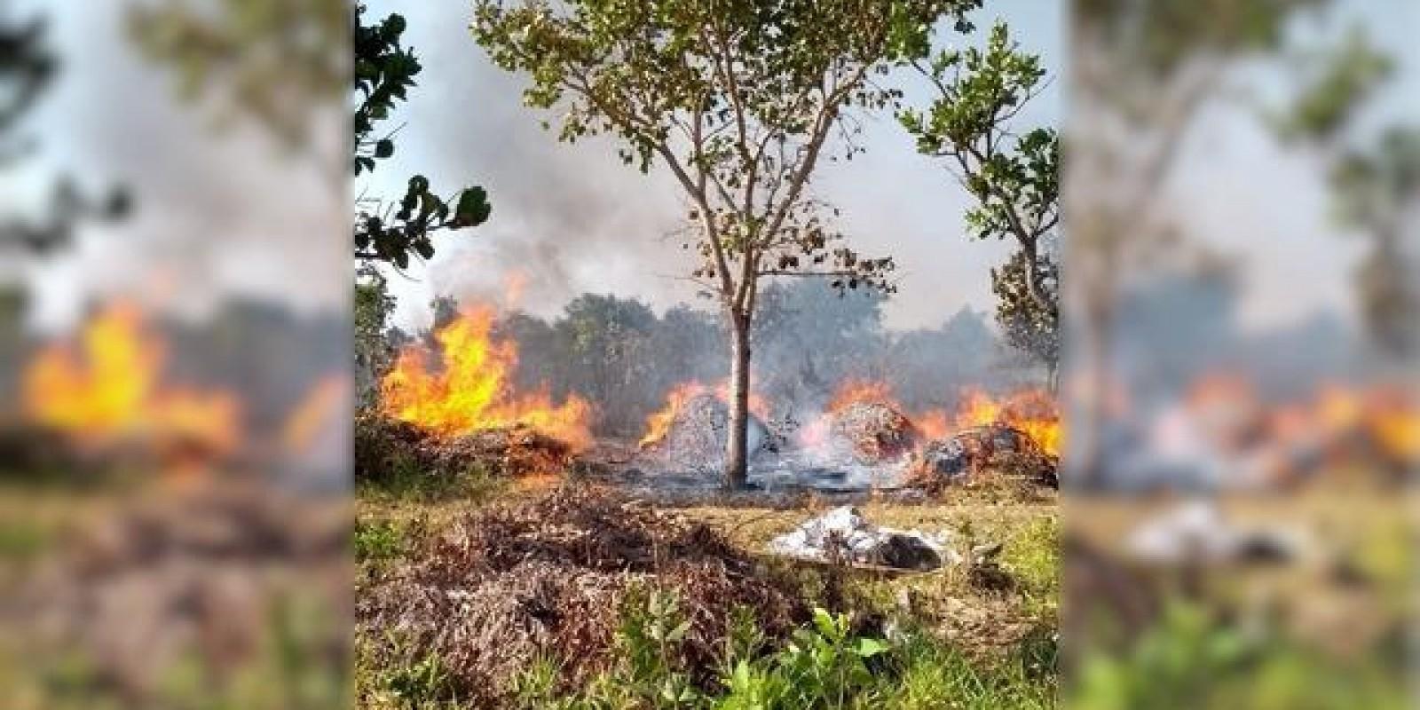 Incêndio destrói quatro hectares de área de vegetação nas proximidades do Aeroporto Municipal de Três Lagoas