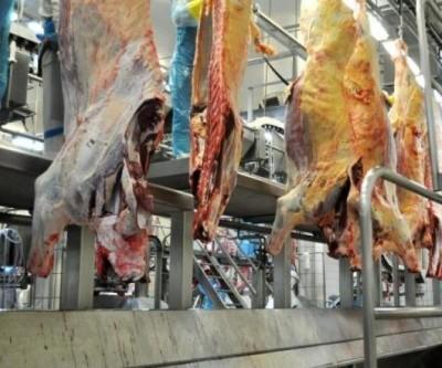 Exportações de carne e celulose impulsionam balança comercial de MS