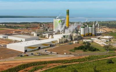 Eldorado Brasil abre vagas para Três Lagoas e outras duas cidades