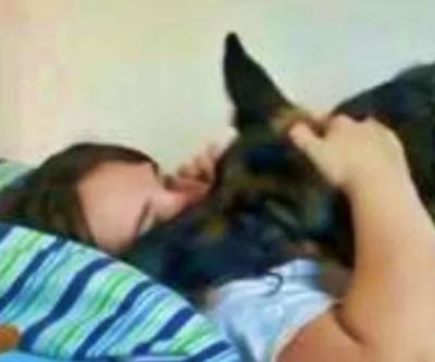Homem flagra mulher na cama lhe traindo com cachorro