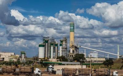 Imasul terá que investir R$ 24 milhões pagos pela Eldorado Celulose em ações ambientais
