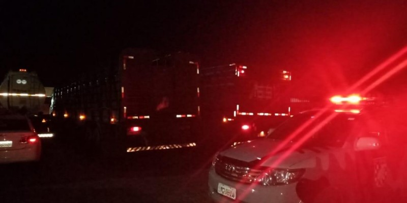 Cinco pessoas são presas por suposto furto de gado e formação de quadrilha