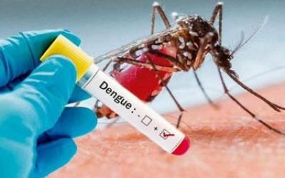 Dengue volta a subir e já somam 2.637 casos positivos em Três Lagoas