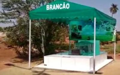 Túmulo é palco e toca chamamé do músico e compositor Brancão