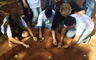 Práticas sustentáveis são bases para ações na Escola Estadual Bom Jesus