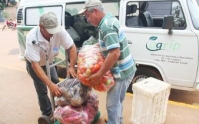 Prefeitura compra mais de 83% dos produtos da alimentação escolar de agricultores familiares de Três Lagoas