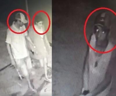 Loja de Três Lagoas furtada 40 vezes divulga imagens de criminosos