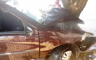 Motorista de Fiat Pálio bate em árvore na manhã deste domingo