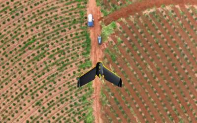 Aviões não tripulados fotografam diariamente 230 hectares de floresta em Três Lagoas