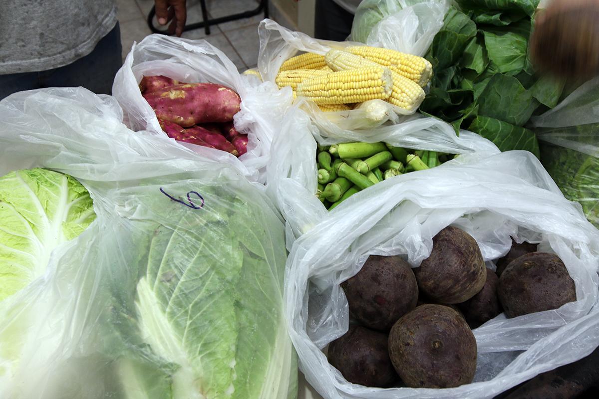 Prefeitura investe mais de R$ 1,7 milhão na merenda escolar adquirindo produtos da região