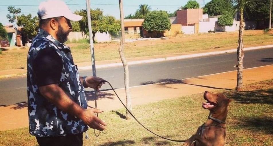 Adestrador de cães de Três Lagoas explica os mitos e verdades sobre a raça PitBull