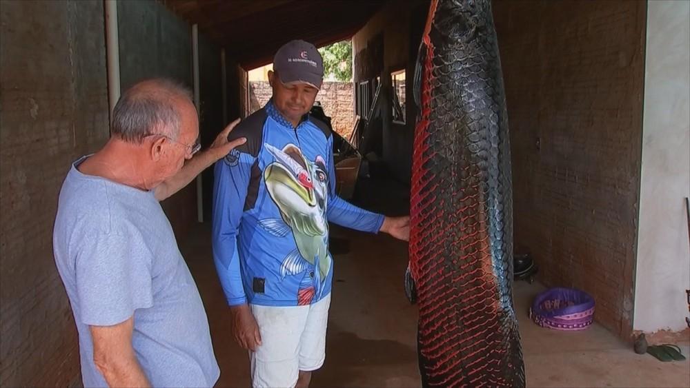 Pescador fisga peixe pirarucu de 110 quilos: 'Virou rotina'