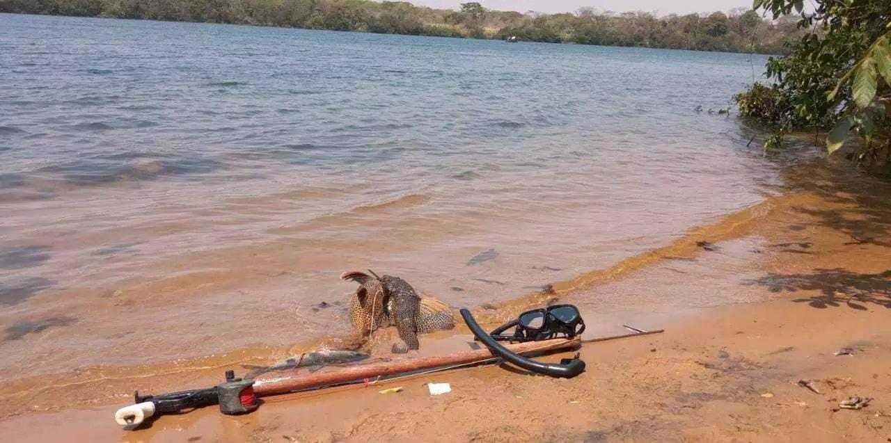 Homem é preso por pescar com arpão peixes fora da medida na região da