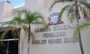 Veja a lista dos 17 vereadores que venceram às eleições 2020 em Três Lagoas